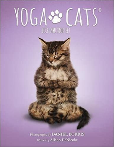 Yoga Cats Deck and Book Set: Alison Denicola, Daniel Borris ...
