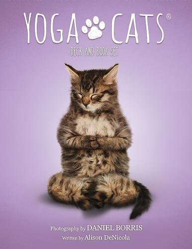 (Yoga Cats Deck and Book Set)