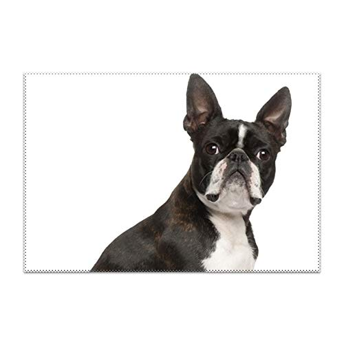YLJH Placemats, Boston Terriers Pug Table Mats,Placemat Non-Slip Washable Place Mats,Heat Resistant Kitchen Tablemats for Dining Table ()