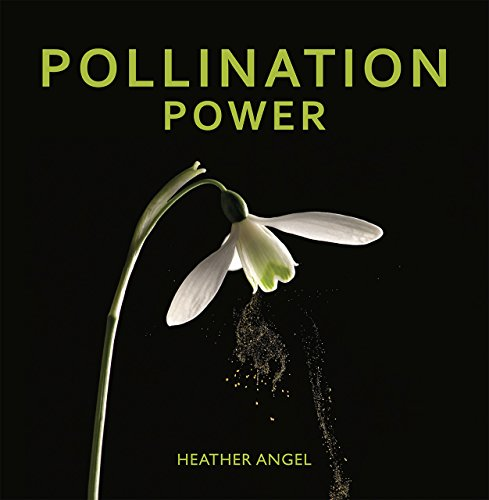 Pollination Power by Univ of Chicago Pr