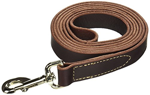 - Coastal Pet Products DCP2068 1-Inch by 6-Feet Leather Circle T Latigo Dog Leash with Nickel Plated Snaps