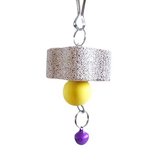 -Maut 5 Stück kauen Spielzeug Zähne sauber Schleifwerkzeug für Haustier Chinchilla Eichhörnchen Papagei zufällige Farbe