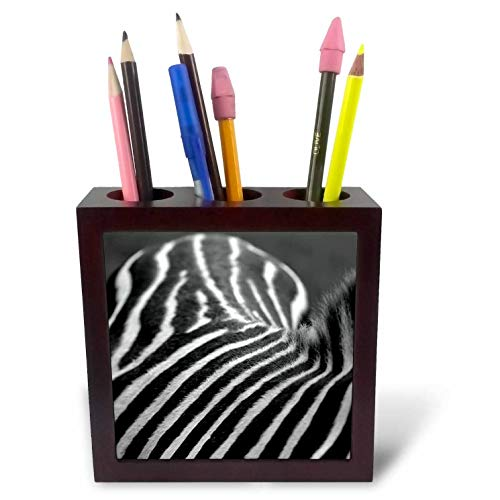 3dRose Stamp City - Animals - Photograph of a Zebras Back in Black and White. A mountian of Stripes. - 5 inch Tile Pen Holder ()