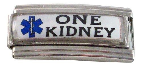 Gadow Jewelry 2-Pack One Kidney Medical ID Alert Italian Charms for Bracelet Blue Enamel