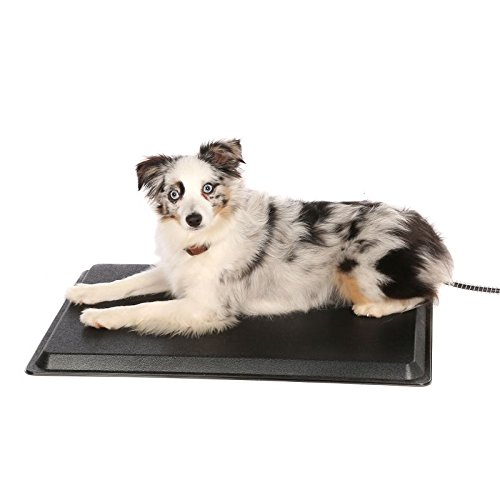 API Plastic Heated Pet Mat 13x19 Small
