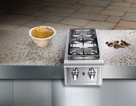 Precision 2-Burner Stainless Steel Built-In Propane Gas Double Side (Capital Cooking Built In Grill)