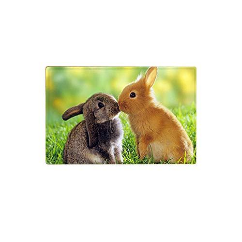 AGONA Funny Bunny Rabbits Bath Mat Non Slip AbsorbentSuper Soft Bathroom Rugs Carpet Animal Green Grass Area Rug Door Mats for Living Room Entryway Bedroom Office (Rugs Area Rabbit Bunny)