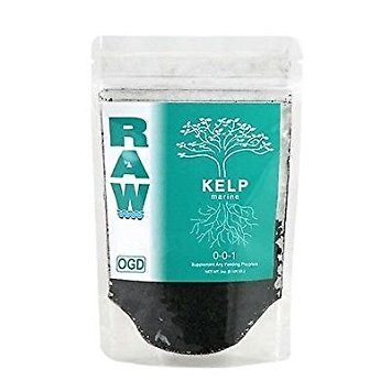 NPK Industries Raw Kelp Fertilizers, 8-Ounce