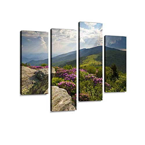 (Appalachian Trail Roan Mountains Rhododendron Bloom on Blue Ridge Peaks Canvas Wall Art Hanging Paintings Modern Artwork Abstract Picture Prints Home Decoration Gift Unique Designed Framed 4 Panel)