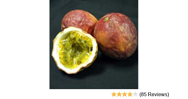 melissa s fresh passion fruits 1 dozen amazon com grocery rh amazon com