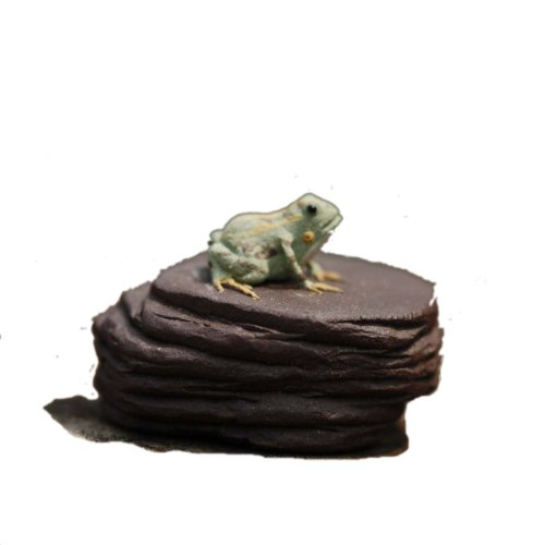 Chinese Yixing Zisha Decoration Frog on Rock Design Delicate Mini Tea ()