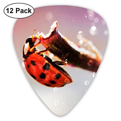 12-pack Fashion Classic Electric Guitar Picks Plectrums Ladybug Picture Instrument Standard Bass Guitarist