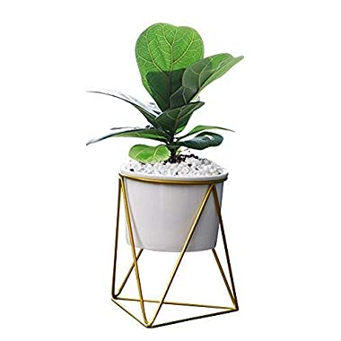 Fieren Outdoor/Indoor Planter Pots/Succulent pots/Stand for 4.3  Pot House Plant White Ceramic Round Bowl with Metal Air Plant Stand for Succulent Planter (Gold)