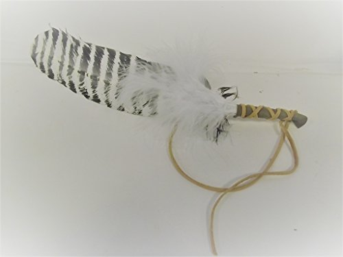 Smudging Feather Blessed for White Sage Smudge and Ceremonies