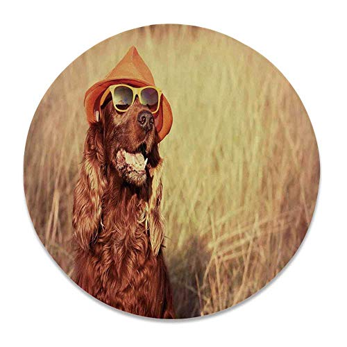 - YOLIYANA Animal Decor Round Ceramic Decorative Plate,Funny Retro Irish Setter Dog Wearing Hat and Sunglasses Humor Joy Picture for Table Or Wall,8 inch
