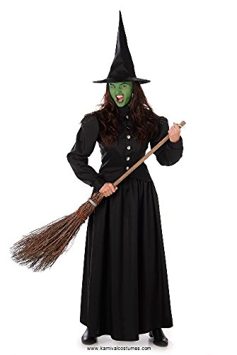 Women's Wicked Witch Costume for Halloween Costume Party Accessory, Medium for $<!--$24.99-->
