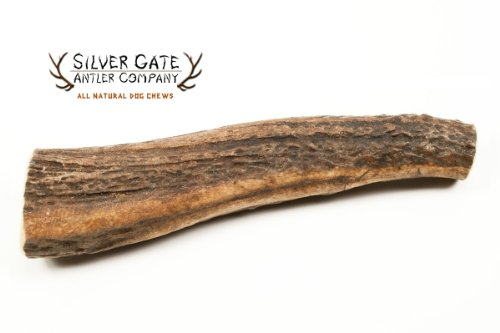 Silver Gate Antlers Antler Chews product image