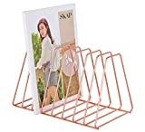 Superbpag File Organizer Copper Newspaper Magazine Holder Document File Stand Journals Magazine Rack for Home or Office, Rose Gold