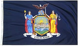 product image for All Star Flags 3x5' New York State Flag - Heavy Weight Nylon Flag from