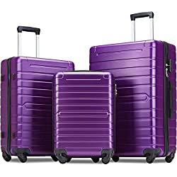 Flieks Luggage Sets 3 Piece Spinner Suitcase Lightweight 20 24 28 inch (Purple)