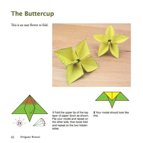 Amazon origami bonsai kit create beautiful botanical amazon origami bonsai kit create beautiful botanical sculptures includes origami book with 14 beautiful projects 48 origami papers and instructional mightylinksfo