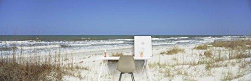 grass-on-the-beach-gulf-of-mexico-st-joseph-peninsula-state-park-florida-panhandle-florida-usa-on-sm