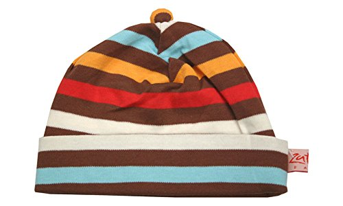 Zutano Chocolate 5 Color Stripe Beanie Hat (18 months)