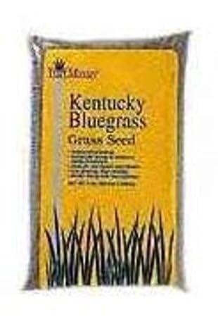 Kentucky Blue Grass Seed, 25 lb