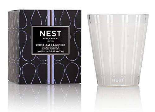 NEST Fragrances Classic Candle- Cedar Leaf & Lavendar, 8.1 oz by NEST Fragrances