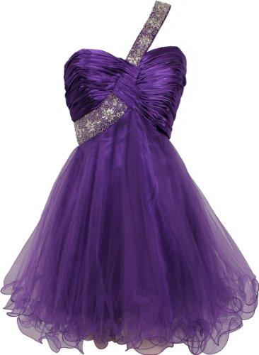 Beaded One-Shoulder Mesh Party Short Prom Homecoming Dress, Medium, Purple (Prom Mesh Beaded Dress)