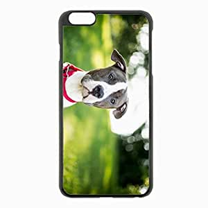 iPhone 6 Plus Black Hardshell Case 5.5inch - dog muzzle collar blur sight Desin Images Protector Back Cover