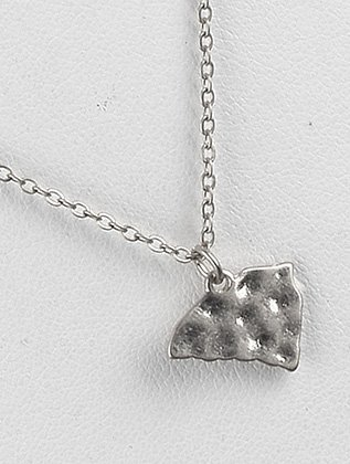 Silver state of south carolina hammered metal necklace Fashion Jewelry FancyCharm