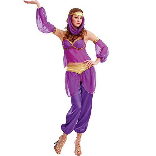 Steamy Genie Women's Halloween Costume Dreamy Arabian Dancer Harem Dress Gown Purple Small (Arabian Theme Party Dress)