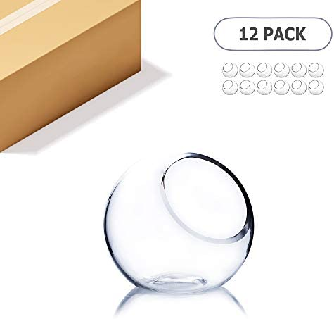 WGV Slant Cut Bowl Glass Vase Bulk, Width 5.5 , Height 5.5 , Clear Round Globe Planter Terrarium Orb, Candy Dish, Fruit Jar, Floral Container for Home Office Decor, 12 Pieces