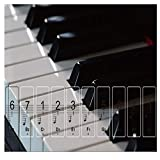 Love Environment Transparent Piano Keyboard Sticker Suit for 61/88 Key Electronic Keyboard 88 Key Piano Stave Note Sticker for White Keys
