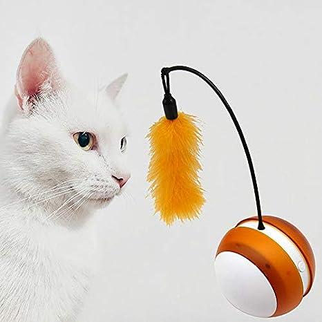 WTTTTW Pelota giratoria automática para Entrenamiento de Vasos para Mascotas, Puntero de luz de Gato eléctrico para Gatos: Amazon.es: Deportes y aire libre