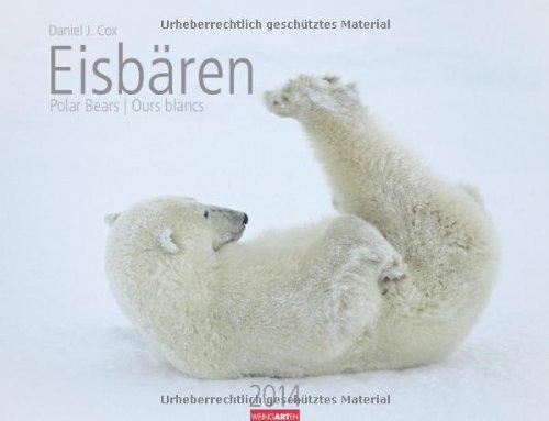 Eisbären 2014