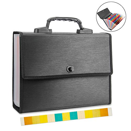 Oak-Pine 25 Pockets Accordion Expanding File Folder - Large Brushed Texture Rainbow A4 Letter Size Expandable File Organizer Document Storage Wallet Briefcase Business Filing Box with Handle