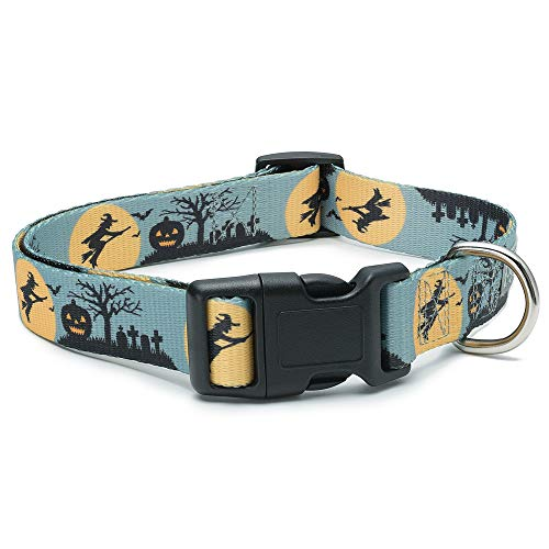 Dog Halloween Ideas (Halloween Dog Collar (The Witch,)