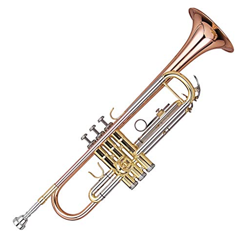Kaizer C-Series (4000) Intermediate Trumpet B Flat for sale  Delivered anywhere in USA