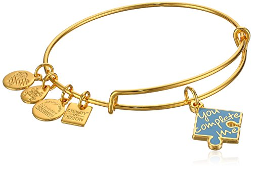 Alex and Ani Womens Charity by Design,You Complete Me, EWB Bracelet, Shiny Gold, Expandable -