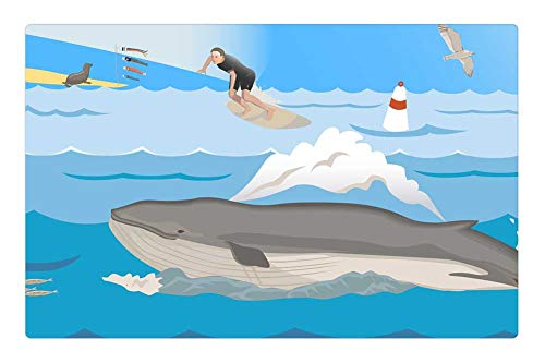 (Tree26 Indoor Floor Rug/Mat (23.6 x 15.7 Inch) - Ocean Whale Blue Activity Seaside Vacation)
