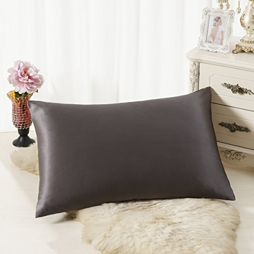 ALASKA BEAR Natural Silk Pillowcase, Hypoallergenic, 19 momme, 600 thread count 100 percent Mulberry Silk, Standard Size with hidden zipper (1, Charcoal Gray) (Sizes Silk Thread)