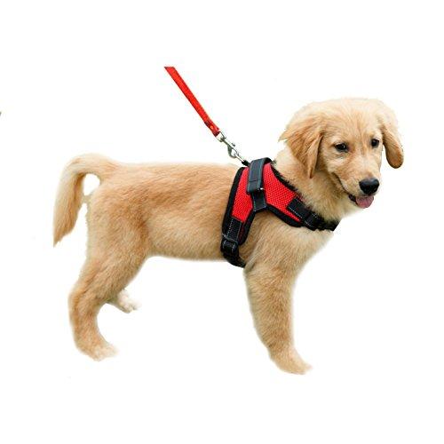 Lalawow Hundegeschirr Welpen-Softgeschirr Reflektierende Hund Halsband Gepolstert Extra Brustgurte mit Griff Hält Ihren Hund sicher auf Spaziergängen und Autofahrten (S - Chest 17.72-22.05