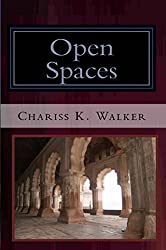 Open Spaces (The Vision Chronicles Book 5)