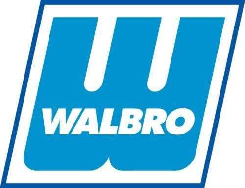 Walbro 125-142 Fuel Filter