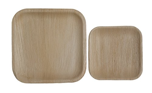 Table To Go 50-Piece Palm Leaf Square Plate Set