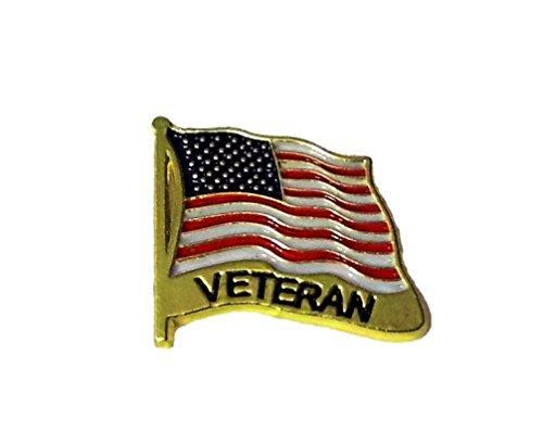 NEW DESIGN USA Flag Veteran Lapel Hat Pin Marines Army Navy Air Force PM7480 (Pins Hat Veteran)