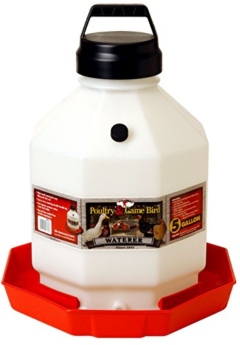 MIller Little Giant 5 Gallon Poultry Waterer Fount - The Best by Miller (Image #1)