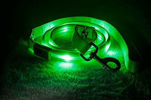 Image of Blazin' Safety LED Dog Leash - USB Rechargeable Flashing Light, 6 Ft, Water Resistant – Avoid Danger – Green